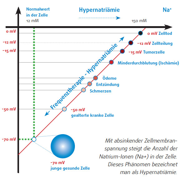 timewaver-home-hypernatriaemie
